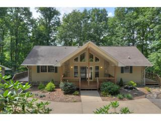 948 Redfield Drive, Clyde, NC 28721 (#3285956) :: Team Browne - Keller Williams Professionals