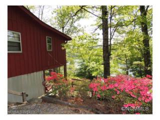 117 Moffitt Road, Lake Lure, NC 28746 (MLS #NCM538093) :: Washburn Real Estate