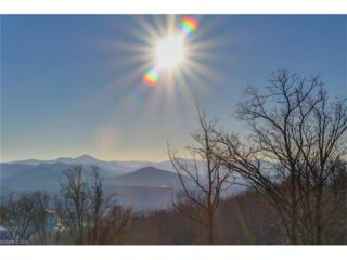 393 Reservoir Road #56, Asheville, NC 28803 (#3140823) :: Exit Mountain Realty