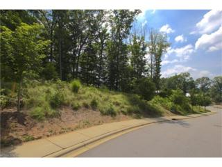 5 Samuel Ashe Drive, Asheville, NC 28805 (#3186164) :: Exit Mountain Realty