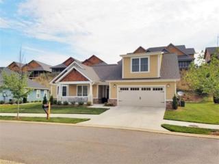 55 Hogans View Circle #504, Hendersonville, NC 28739 (#3189033) :: Exit Realty Vistas