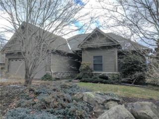 12 Red Plum Lane Lot 5, Black Mountain, NC 28711 (#3249837) :: Exit Realty Vistas