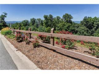 30 Points West Drive #404, Asheville, NC 28804 (#3268321) :: Exit Realty Vistas