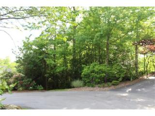 306 Pine Forest Trace #276, Hendersonville, NC 28739 (#3274348) :: Caulder Realty and Land Co.
