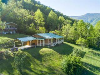 42 Fireside Drive, Maggie Valley, NC 28751 (#3279641) :: Exit Realty Vistas