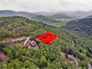 99999 Wedgewood Terrace #941, Black Mountain, NC 28711 (#3282797) :: Exit Realty Vistas