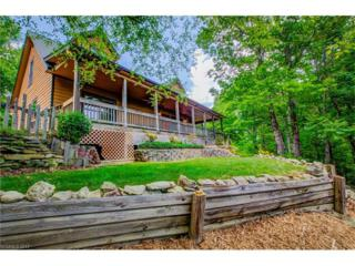 98 Tierra Lane, Hendersonville, NC 28792 (#3285667) :: Exit Mountain Realty