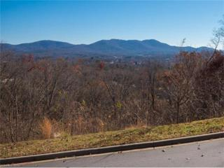 22 Samuel Ashe Drive #45, Asheville, NC 28803 (#NCM565181) :: Exit Mountain Realty