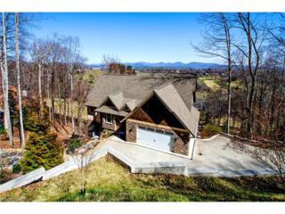 1025 High Vista Drive, Mills River, NC 28759 (#3258277) :: Exit Realty Vistas