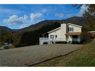 102 Hollow Drive, Maggie Valley, NC 28751 (#3205289) :: Exit Realty Vistas