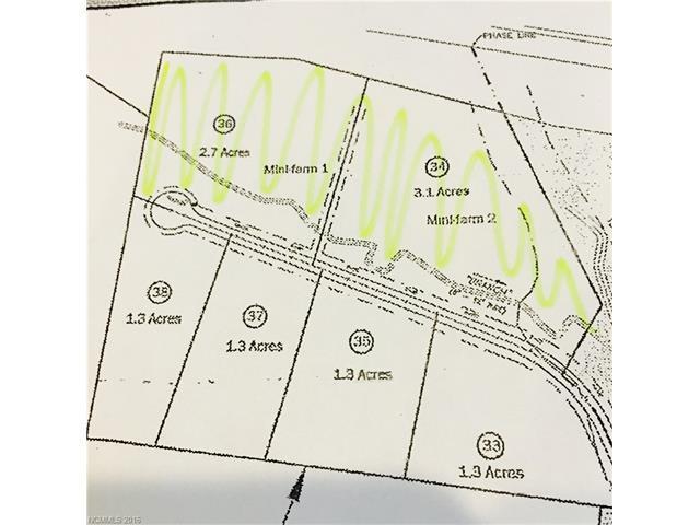 9999 Justice Ridge Estates Drive #36, Candler, NC 28715 (#3166810) :: Exit Realty Vistas