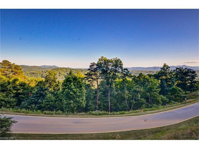147 Senator Reynolds Road, Asheville, NC 28804 (#3196104) :: Exit Realty Vistas