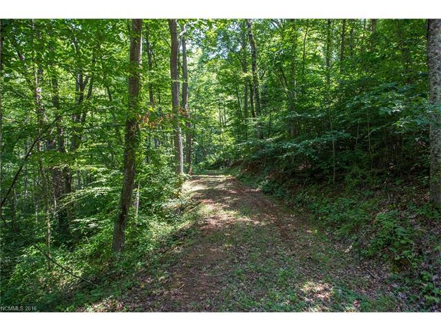0 Candy Ridge Road #16, Candler, NC 28715 (#3219368) :: Exit Realty Vistas