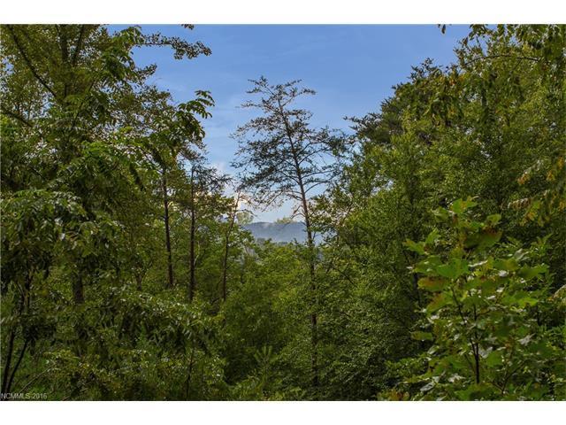 0 Candy Ridge Road #19, Candler, NC 28715 (#3219638) :: Exit Realty Vistas