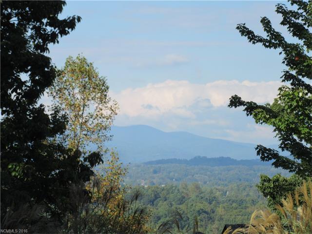 230 High Road Overlook #39, Hendersonville, NC 28739 (#3221002) :: Puffer Properties