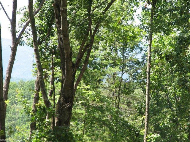 LOT 426 Roberts Trail #426, Lake Lure, NC 28746 (MLS #3224572) :: Washburn Real Estate