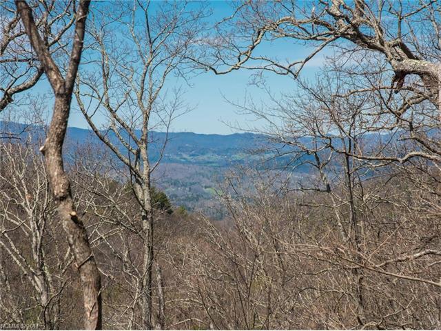 642 Altamont View #55, Asheville, NC 28804 (#3270341) :: Exit Realty Vistas