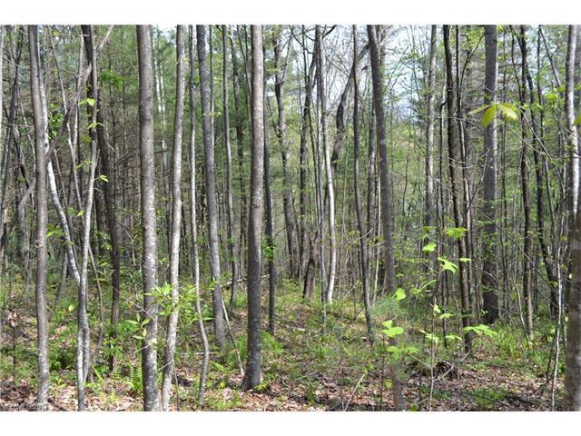 96 Turkey Roost Court #32, Flat Rock, NC 28731 (#3273468) :: Puffer Properties