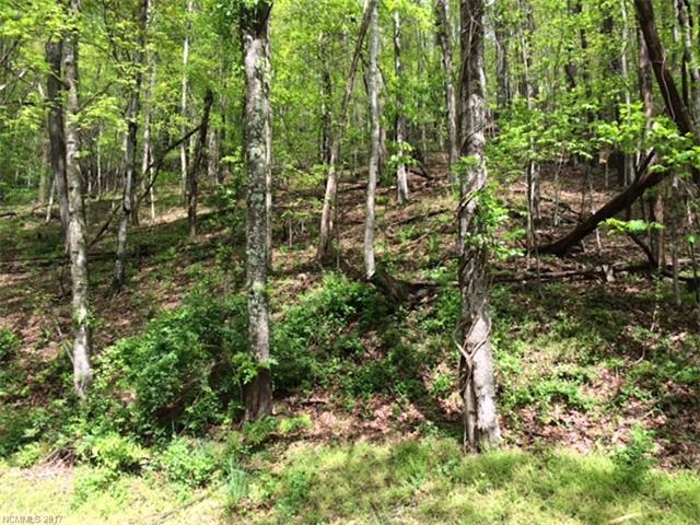 Lot 101 & 107 High Vista Drive, Mills River, NC 28759 (#3274834) :: Exit Realty Vistas