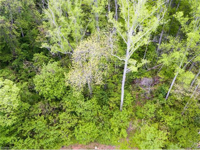 20 La Grange Drive #25, Asheville, NC 28803 (#3275074) :: Exit Mountain Realty