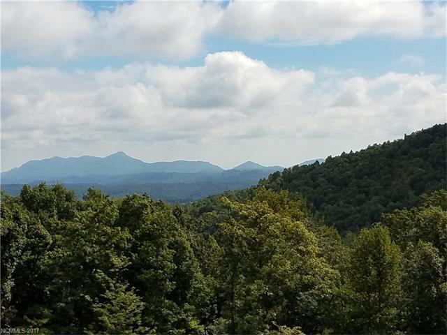 147 Tarnhill Drive E #68, Flat Rock, NC 28731 (#3275762) :: Caulder Realty and Land Co.