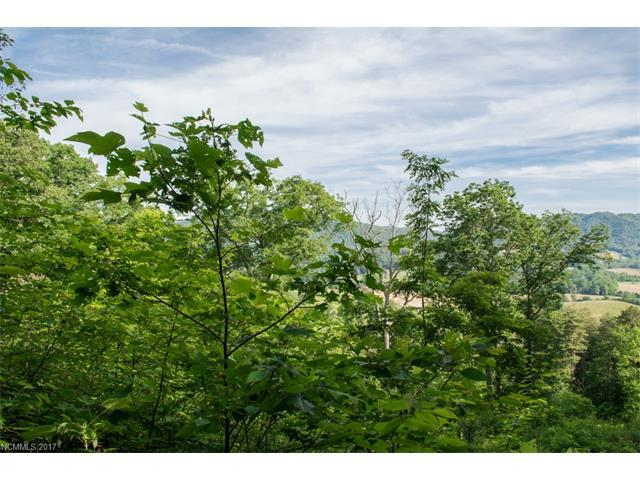 296 Hilltop View Drive, Fletcher, NC 28732 (#3288674) :: Keller Williams Biltmore Village