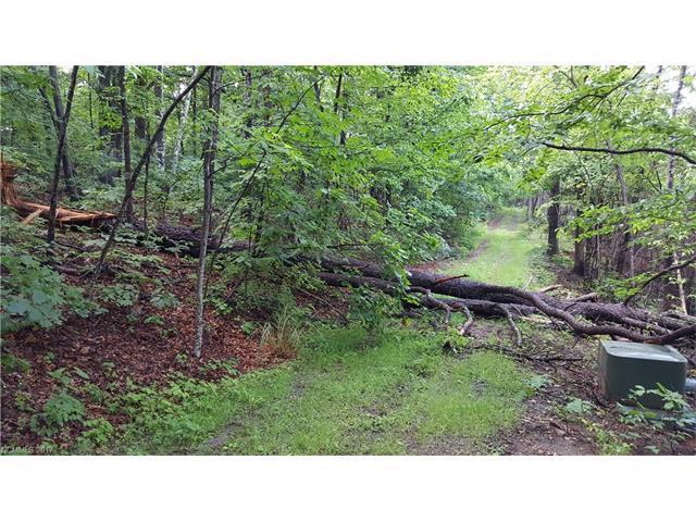 15 Rolling Ridge Trail #20, Black Mountain, NC 28711 (#3289638) :: Exit Realty Vistas