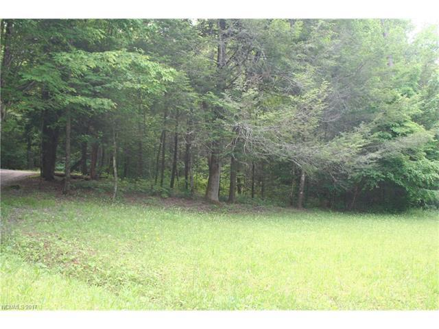 NC Hwy 9 Nc Hwy 9 Highway, Black Mountain, NC 28711 (#3290740) :: Exit Realty Vistas