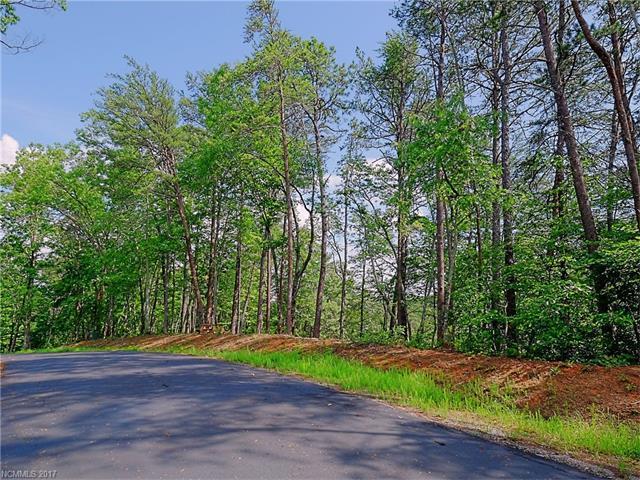 000 Lure Ridge Drive #24, Lake Lure, NC 28746 (#3291417) :: Exit Realty Vistas