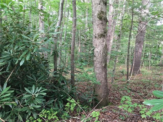 40 Nighthawk Knoll #3, Fairview, NC 28730 (#3293751) :: Caulder Realty and Land Co.