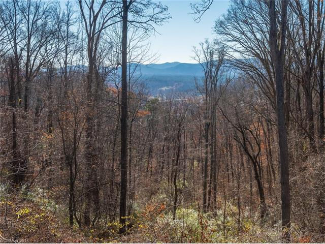 44 Samuel Ashe Drive #55, Asheville, NC 28803 (#3294568) :: Exit Mountain Realty