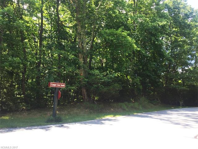 101 Little Cherokee Ridge, Hendersonville, NC 28739 (#3294722) :: Caulder Realty and Land Co.