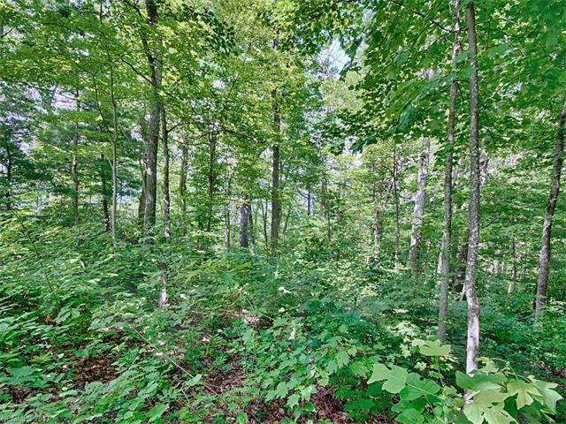 107 Berry Creek Drive 60 Sec T, Flat Rock, NC 28731 (#3299581) :: Caulder Realty and Land Co.