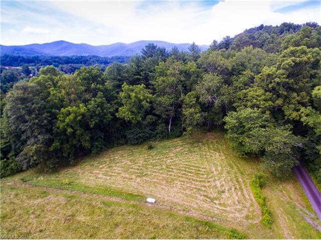 32 Whiteash Farm Trail, Fairview, NC 28730 (#3299633) :: Team Browne - Keller Williams Professionals Realty