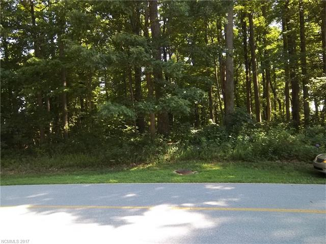 115 Berry Creek Drive, Flat Rock, NC 28731 (#3299753) :: Exit Mountain Realty