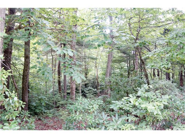 113 Pinnacle Peak Lane, Flat Rock, NC 28731 (#3300375) :: Caulder Realty and Land Co.