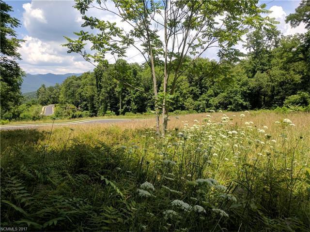 16 Old Lafayette Lane #10, Black Mountain, NC 28711 (#3300761) :: Keller Williams Biltmore Village
