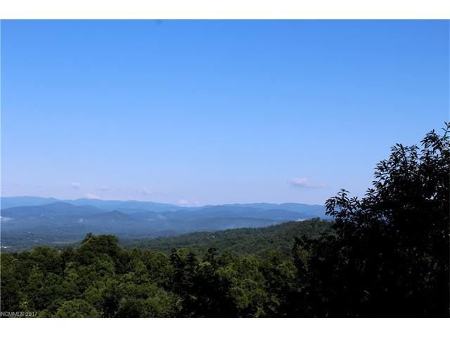 105 Crossvine Trail #15, Hendersonville, NC 28739 (#3300875) :: Exit Mountain Realty