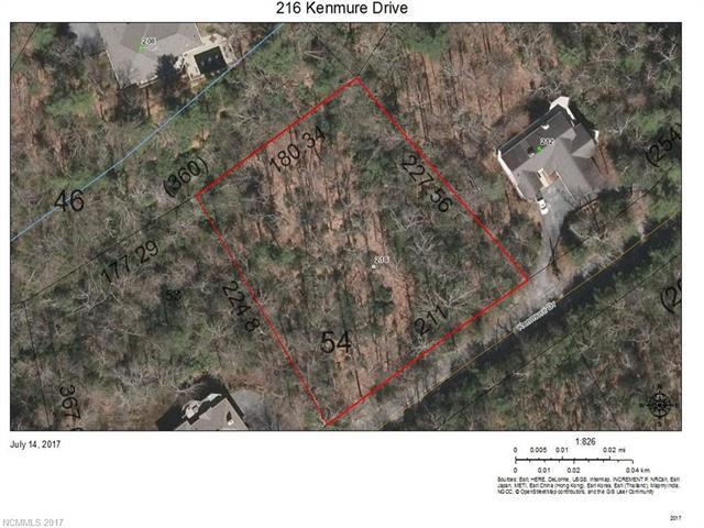 216 Kenmure Drive #54, Flat Rock, NC 28731 (#3301500) :: Caulder Realty and Land Co.