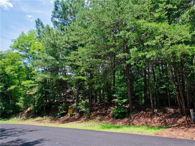 0 Shumont Estates Drive #102, Lake Lure, NC 28746 (#3302063) :: Caulder Realty and Land Co.