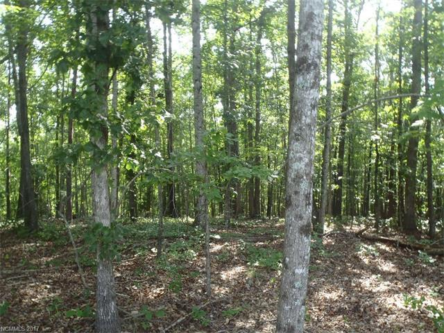 Lot 12 Boy Scout Road #12, Rutherfordton, NC 28139 (#3302230) :: Caulder Realty and Land Co.