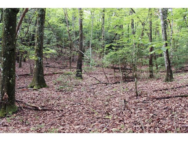 5 Walnut Ridge Road #5, Brevard, NC 28712 (#3302292) :: Exit Mountain Realty