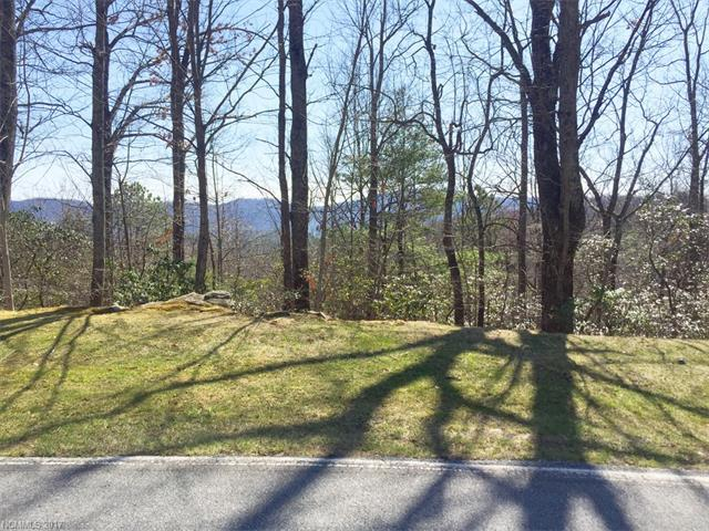102 Bollers Knob Lane #91, Hendersonville, NC 28739 (#3302456) :: Caulder Realty and Land Co.