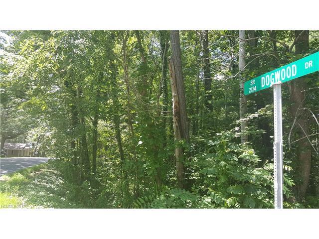 999999 Dogwood Drive, Weaverville, NC 28787 (#3303127) :: Team Browne - Keller Williams Professionals Realty
