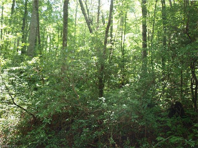 000 Aiken Road, Brevard, NC 28712 (#3303235) :: Exit Mountain Realty