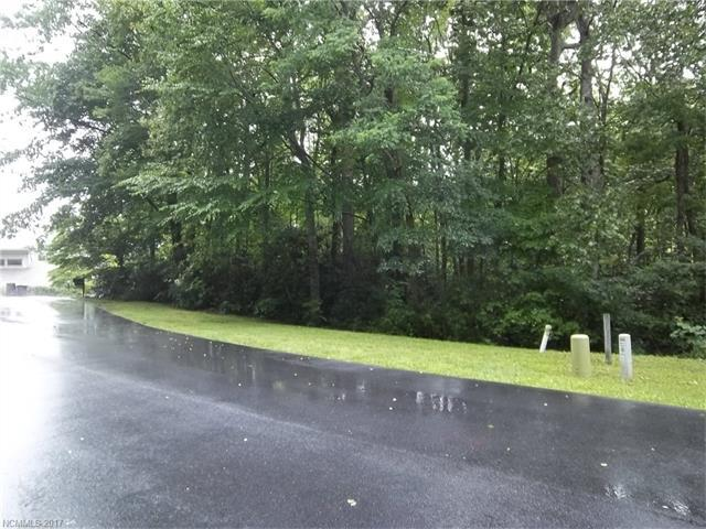 2310 Golf Club Court, Hendersonville, NC 28739 (#3303774) :: Caulder Realty and Land Co.