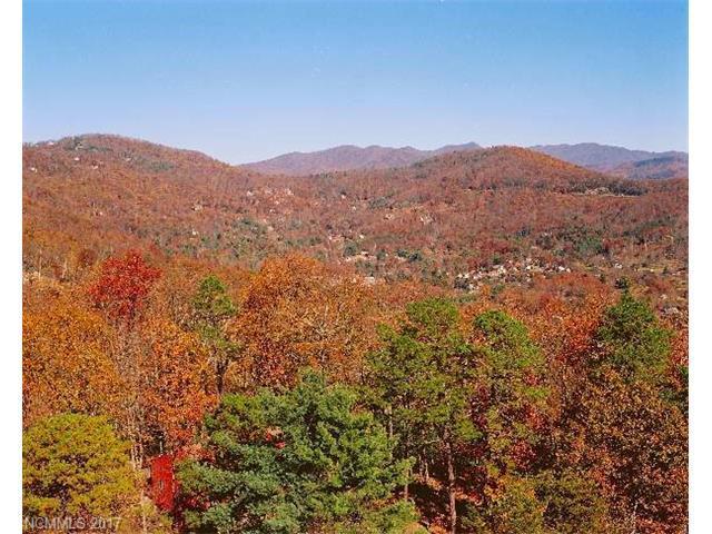 33 Boulder Creek Way, Asheville, NC 28805 (#3303873) :: Team Browne - Keller Williams Professionals Realty