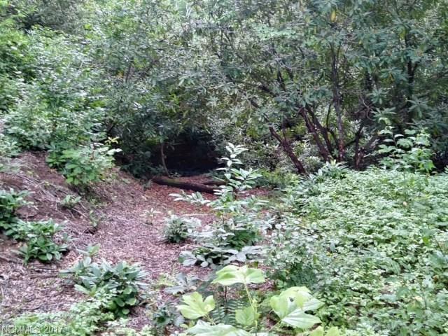 Lot 3 Rush Creek Road, Black Mountain, NC 28711 (#3303918) :: Exit Realty Vistas