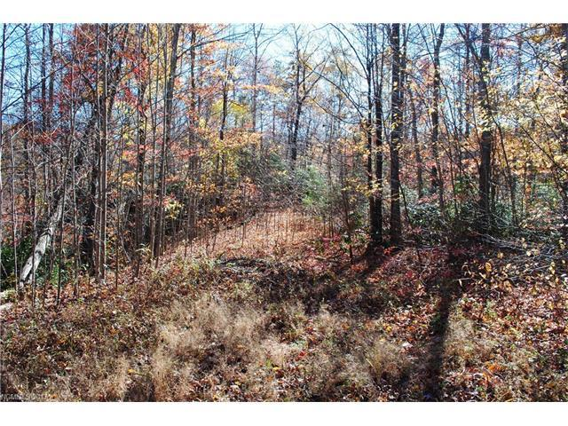 TBD Old Lake Trail Lots9+10C, Old Fort, NC 28762 (#3304083) :: Team Browne - Keller Williams Professionals Realty