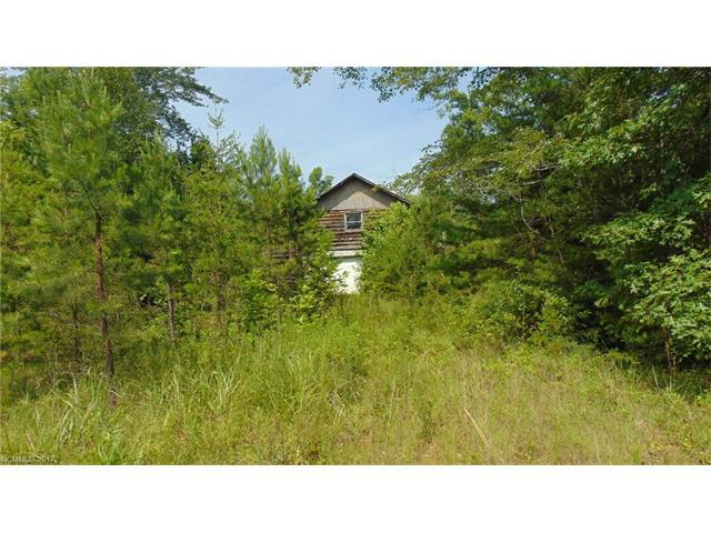 273 Kendrick Lane 33A, Rutherfordton, NC 28139 (#3304154) :: Exit Realty Vistas
